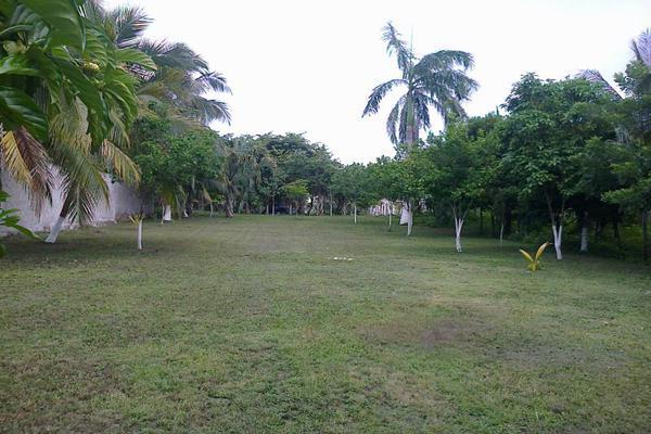 Foto de terreno comercial en renta en avenida 19c , diego rojas, bacalar, quintana roo, 7157960 No. 04