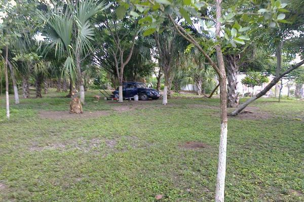 Foto de terreno comercial en renta en avenida 19c , diego rojas, bacalar, quintana roo, 7157960 No. 06
