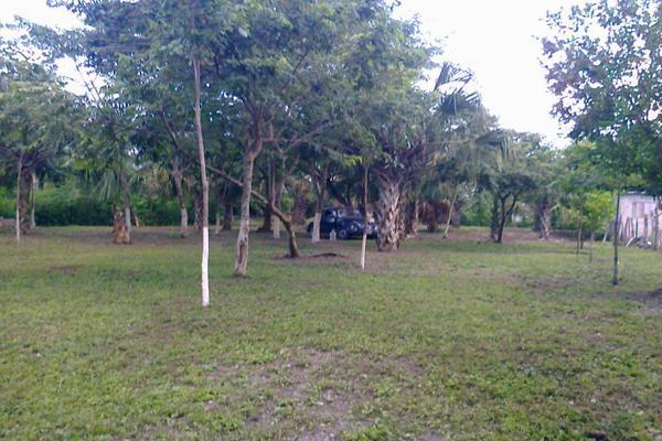 Foto de terreno comercial en renta en avenida 19c , diego rojas, bacalar, quintana roo, 7157960 No. 07