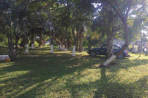 Foto de terreno comercial en renta en avenida 19c , diego rojas, bacalar, quintana roo, 7157960 No. 08