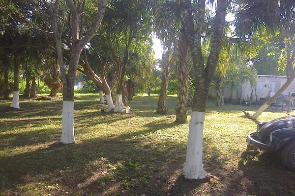 Foto de terreno comercial en renta en avenida 19c , diego rojas, bacalar, quintana roo, 7157960 No. 10