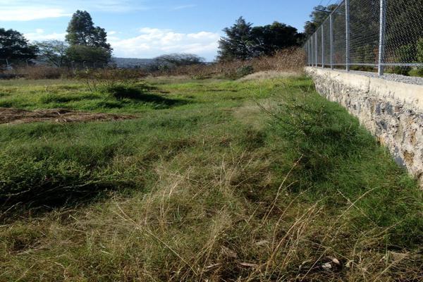 Foto de terreno comercial en venta en avenida 5 de mayo , xochitepec (san antonio tecomitl), milpa alta, df / cdmx, 15735694 No. 04