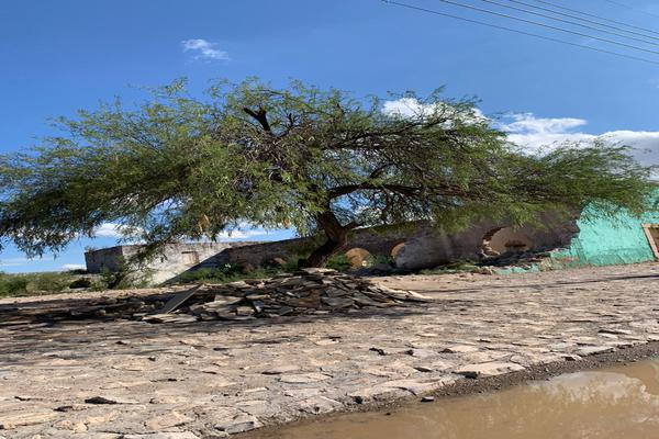 Foto de terreno comercial en venta en avenida carranza 100, derramaderos, villa de arista, san luis potosí, 16084414 No. 08