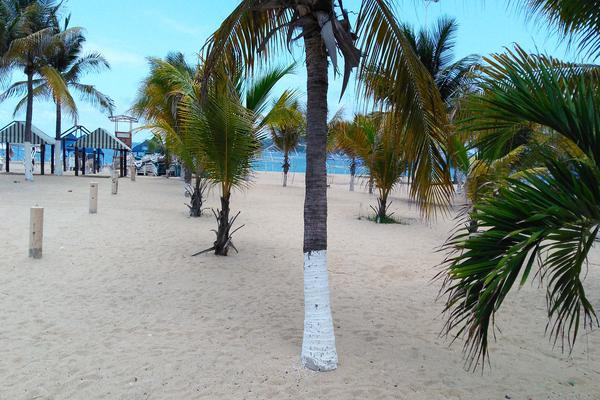 Foto de departamento en venta en avenida costera miguel aleman , magallanes, acapulco de juárez, guerrero, 5779635 No. 18