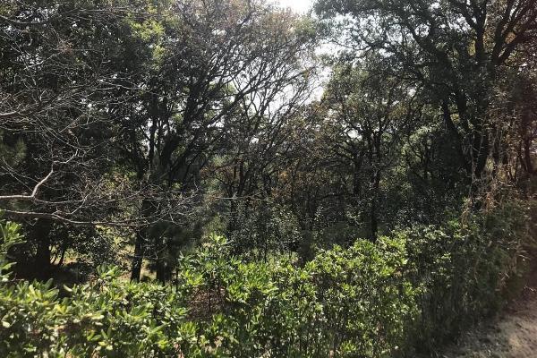 Foto de terreno habitacional en venta en avenida de los poetas numero 100 , san mateo tlaltenango, cuajimalpa de morelos, df / cdmx, 3646077 No. 04