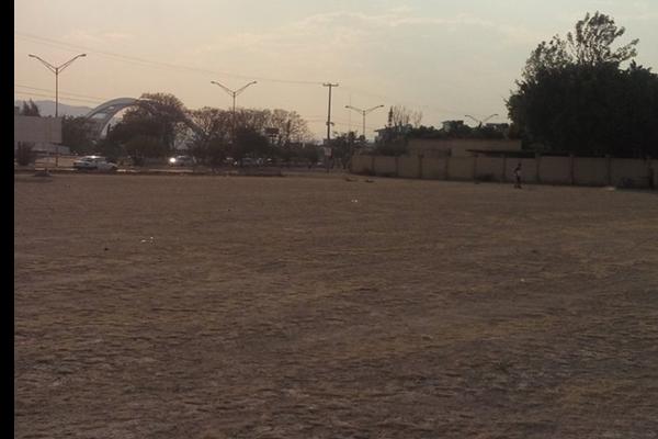 Foto de terreno comercial en renta en avenida del parque , jardines de las bugambilias, aguascalientes, aguascalientes, 5641097 No. 06
