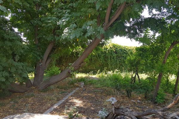 Foto de rancho en venta en avenida estrella , villa paraíso, lerdo, durango, 6213547 No. 01