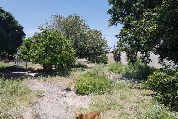 Foto de rancho en venta en avenida estrella , villa paraíso, lerdo, durango, 6213547 No. 03