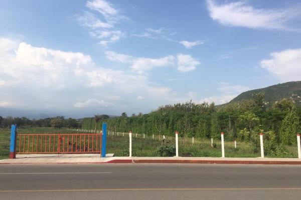 Foto de terreno habitacional en venta en avenida ferrocarril 62674, el guante, emiliano zapata, morelos, 9175590 No. 02
