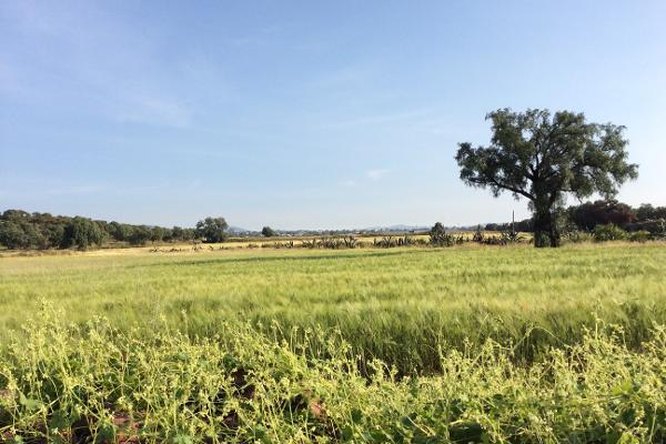 Foto de terreno comercial en venta en avenida hidalgo , vicente guerrero (san javier), tolcayuca, hidalgo, 6153471 No. 11