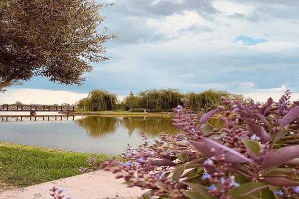 Foto de departamento en venta en avenida horizontes , horizontes, san luis potosí, san luis potosí, 8735148 No. 19