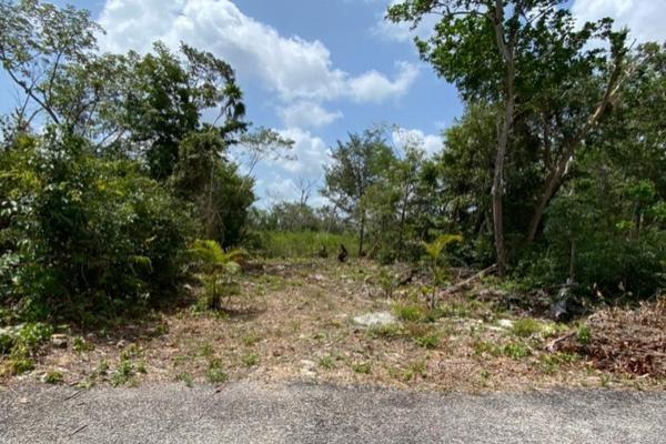 Foto de terreno habitacional en venta en avenida huayacan pedregal plus , alfredo v bonfil, benito juárez, quintana roo, 20274215 No. 08