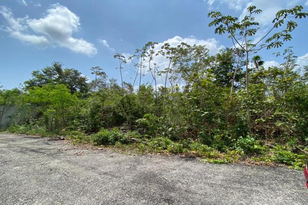 Foto de terreno habitacional en venta en avenida huayacan pedregal plus , alfredo v bonfil, benito juárez, quintana roo, 20274215 No. 12
