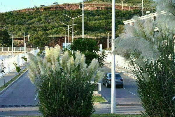 Foto de departamento en venta en avenida las fuentes , paisajes del tapatío, san pedro tlaquepaque, jalisco, 0 No. 12