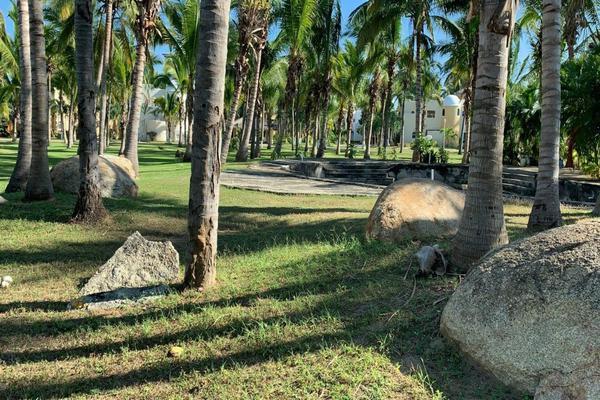 Foto de terreno industrial en venta en avenida las palmas 70, playa diamante, acapulco de juárez, guerrero, 8395820 No. 03