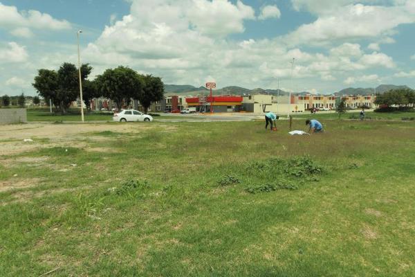 Foto de terreno comercial en renta en avenida los treboles 1, los molinos, zapopan, jalisco, 8116053 No. 06
