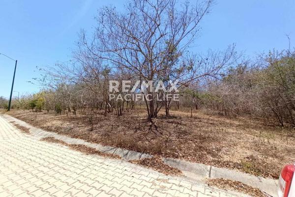 Foto de terreno habitacional en venta en avenida paseo del pacífico , real del valle, mazatlán, sinaloa, 5641370 No. 06