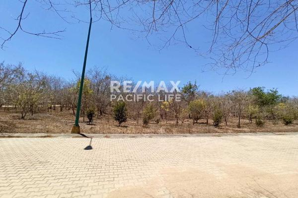 Foto de terreno habitacional en venta en avenida paseo del pacífico , real del valle, mazatlán, sinaloa, 5641370 No. 07