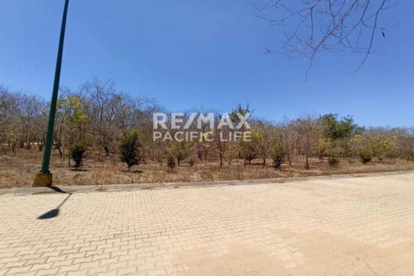 Foto de terreno habitacional en venta en avenida paseo del pacífico , real del valle, mazatlán, sinaloa, 5641370 No. 09