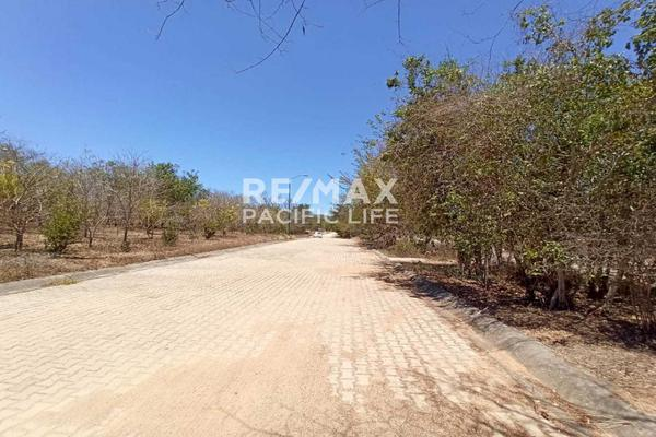 Foto de terreno habitacional en venta en avenida paseo del pacífico , real del valle, mazatlán, sinaloa, 5641370 No. 10