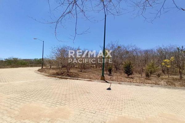 Foto de terreno habitacional en venta en avenida paseo del pacífico , real del valle, mazatlán, sinaloa, 5641370 No. 12