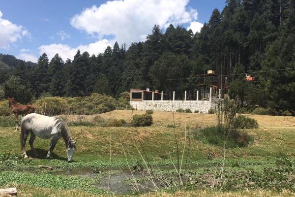 Foto de terreno habitacional en venta en avenida principal , pachuca 88, pachuca de soto, hidalgo, 8869465 No. 24