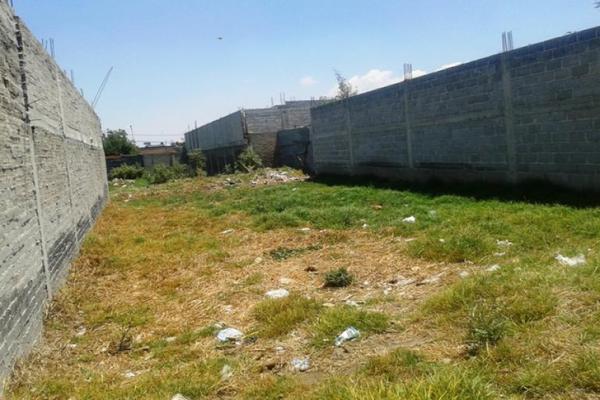 Foto de terreno habitacional en venta en avenida santa cruz 0, san sebastián, chalco, méxico, 8870760 No. 04