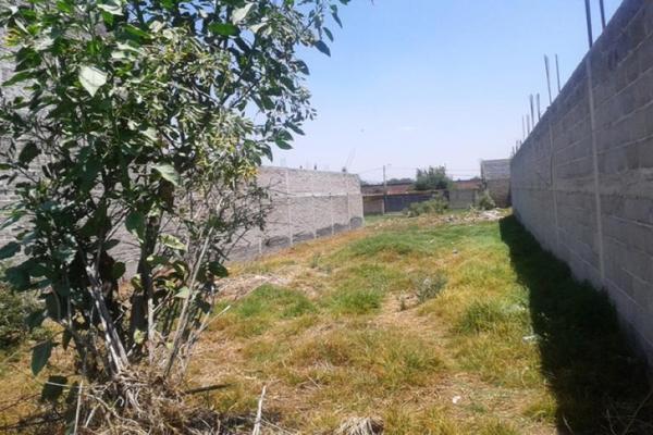 Foto de terreno habitacional en venta en avenida santa cruz 0, san sebastián, chalco, méxico, 8871704 No. 02