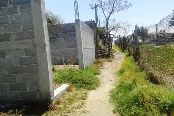 Foto de terreno habitacional en venta en avenida santa cruz 0, san sebastián, chalco, méxico, 8871704 No. 08