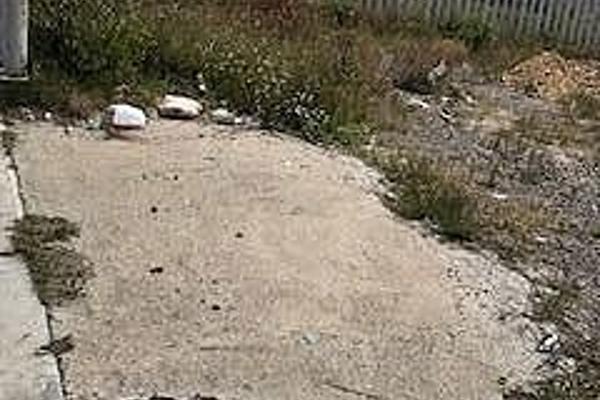 Foto de terreno habitacional en renta en avenida tejocotes , san martín obispo, cuautitlán izcalli, méxico, 5869626 No. 03
