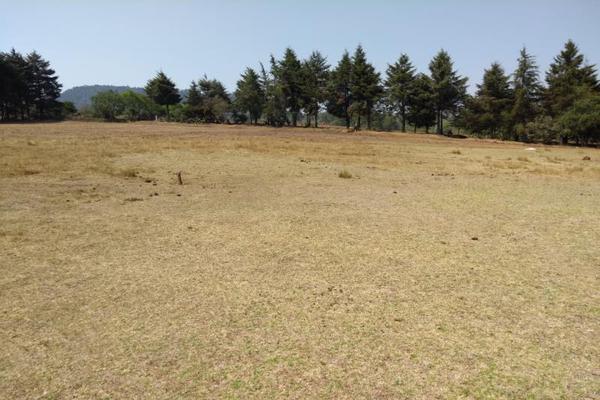 Foto de terreno habitacional en venta en avenida zaragoza 0, toltempan, chignahuapan, puebla, 10002221 No. 02