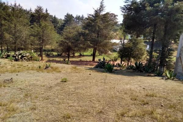 Foto de terreno habitacional en venta en avenida zaragoza 0, toltempan, chignahuapan, puebla, 10002221 No. 05