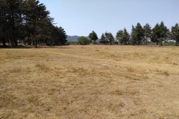 Foto de terreno habitacional en venta en avenida zaragoza 0, toltempan, chignahuapan, puebla, 10002221 No. 06