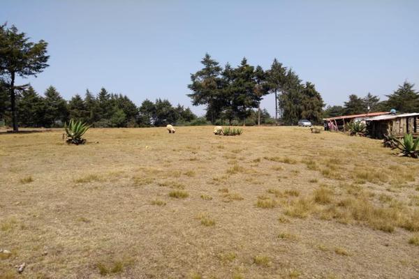 Foto de terreno habitacional en venta en avenida zaragoza 0, toltempan, chignahuapan, puebla, 10002221 No. 07
