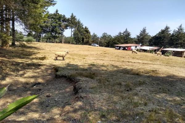 Foto de terreno habitacional en venta en avenida zaragoza 0, toltempan, chignahuapan, puebla, 10002221 No. 09