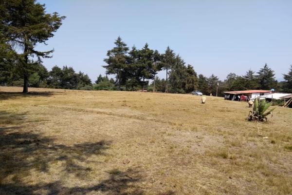 Foto de terreno habitacional en venta en avenida zaragoza 0, toltempan, chignahuapan, puebla, 10002221 No. 10