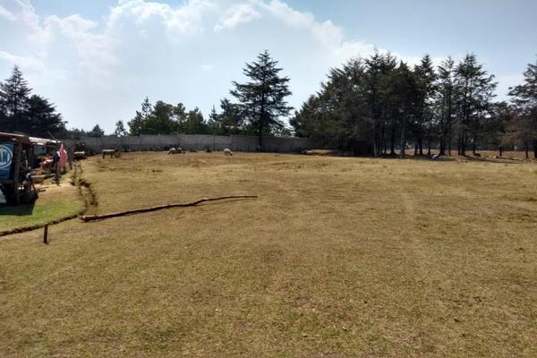 Foto de terreno habitacional en venta en avenida zaragoza 0, toltempan, chignahuapan, puebla, 10002221 No. 12
