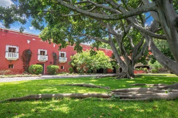Foto de rancho en venta en  , axochiapan, axochiapan, morelos, 6214133 No. 18