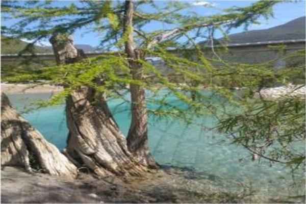 Foto de terreno habitacional en venta en  , ayutla, arroyo seco, querétaro, 3054040 No. 02