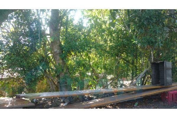 Foto de terreno habitacional en venta en  , azteca, tuxpan, veracruz de ignacio de la llave, 5811289 No. 07