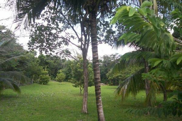 Foto de terreno habitacional en venta en  , bacalar, bacalar, quintana roo, 7260889 No. 01