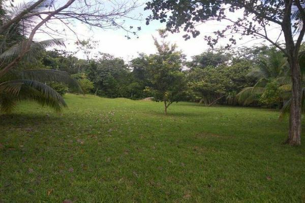 Foto de terreno habitacional en venta en  , bacalar, bacalar, quintana roo, 7260889 No. 02