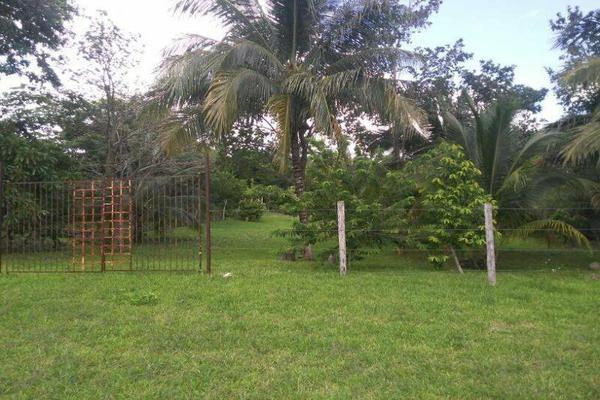 Foto de terreno habitacional en venta en  , bacalar, bacalar, quintana roo, 7260889 No. 04
