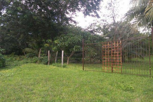 Foto de terreno habitacional en venta en  , bacalar, bacalar, quintana roo, 7260889 No. 05