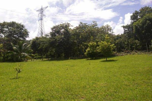 Foto de terreno habitacional en venta en  , bacalar, bacalar, quintana roo, 7260889 No. 06