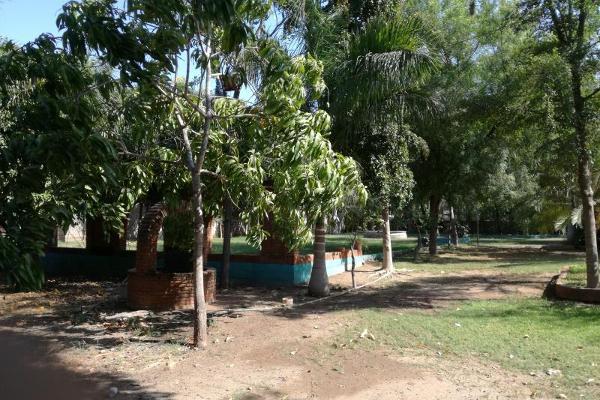 Foto de rancho en venta en  , bacurimi, culiacán, sinaloa, 5806675 No. 19
