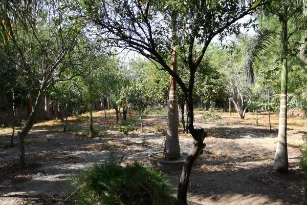 Foto de rancho en venta en  , bacurimi, culiacán, sinaloa, 5806675 No. 20