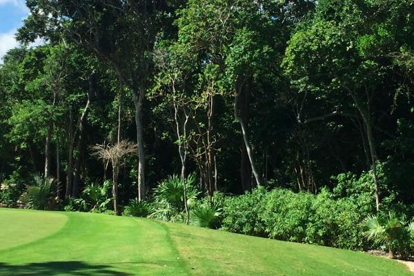 Foto de terreno habitacional en venta en bahia principe , akumal, tulum, quintana roo, 5642913 No. 08
