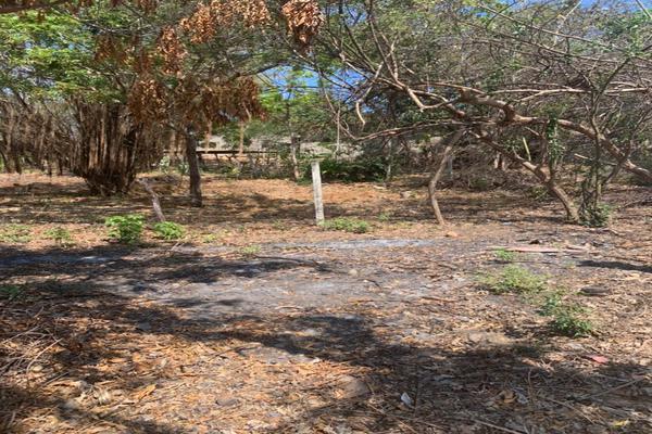 Foto de terreno habitacional en venta en barra de navidad na , santa maria, santa maría colotepec, oaxaca, 20183199 No. 04