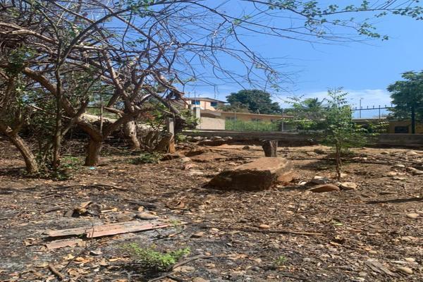 Foto de terreno habitacional en venta en barra de navidad na , santa maria, santa maría colotepec, oaxaca, 20183199 No. 05